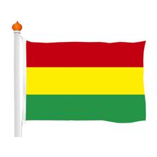 Carnavalsvlag